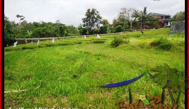 TANAH DIJUAL di CANGGU BALI 10 Are View Sawah dan sungai , lingkungan villa