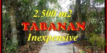 TANAH MURAH di TABANAN BALI Untuk INVESTASI TJTB160