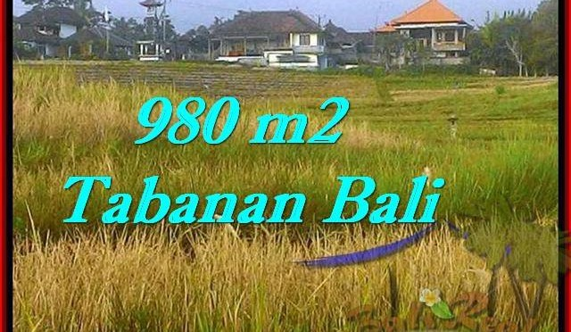 TANAH MURAH di TABANAN BALI Untuk INVESTASI TJTB244