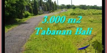 TANAH MURAH di TABANAN BALI 3,000 m2 di Tabanan Selemadeg