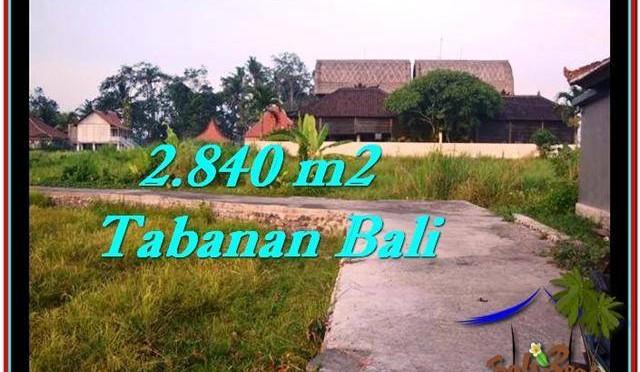 DIJUAL TANAH di TABANAN BALI Untuk INVESTASI TJTB247