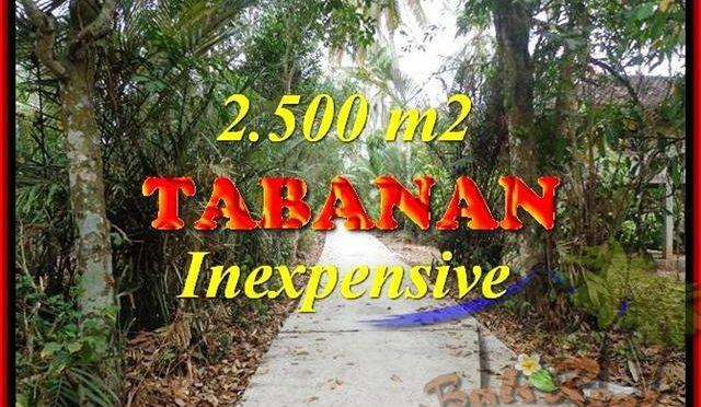 DIJUAL TANAH di TABANAN Untuk INVESTASI TJTB160