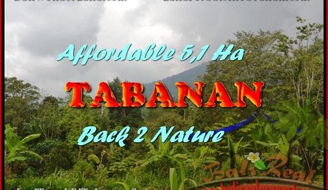 JUAL TANAH MURAH di TABANAN 51,100 m2 View gunung dan laut singaraja