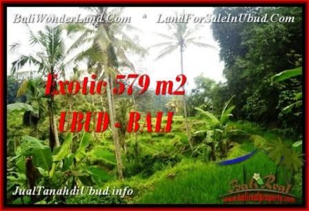 TANAH di UBUD JUAL MURAH 5.79 Are View Sawah dan sungai