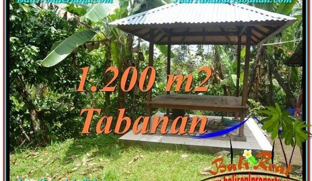 TANAH MURAH di TABANAN BALI 1,200 m2 di Tabanan Penebel